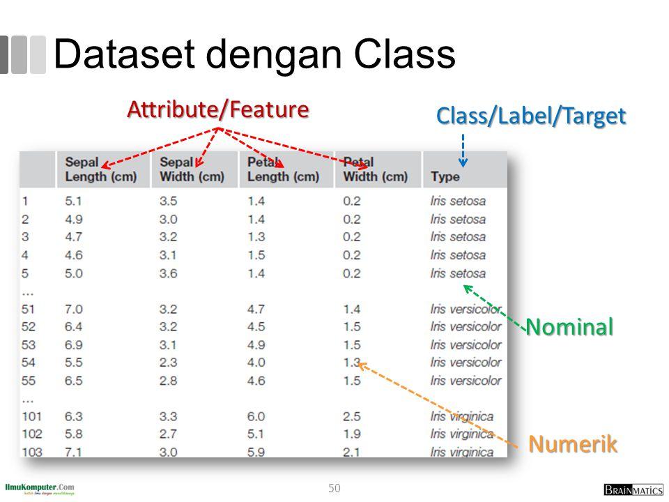 Dataset dengan Class Attribute/Feature Class/Label/Target Nominal