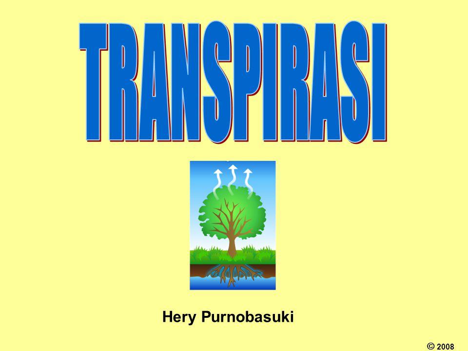 TRANSPIRASI Hery Purnobasuki  2008