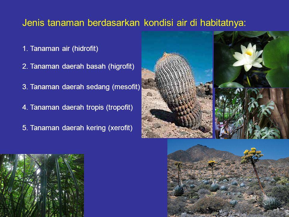Jenis tanaman berdasarkan kondisi air di habitatnya: