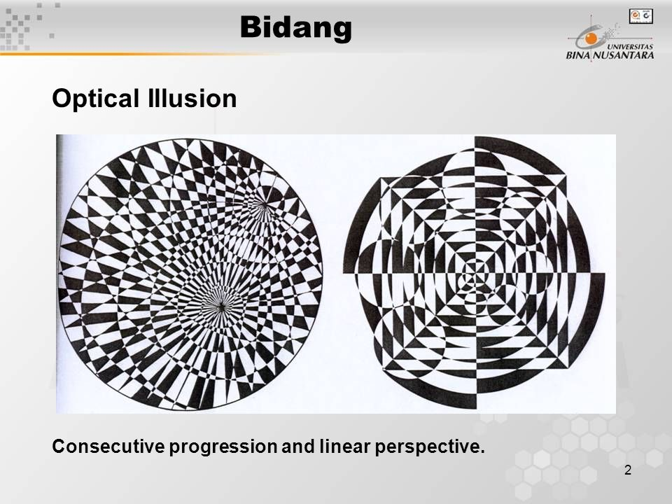 Bidang Optical Illusion