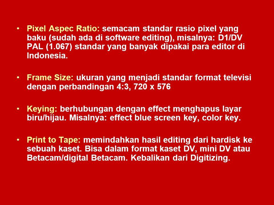 Pixel Aspec Ratio: semacam standar rasio pixel yang baku (sudah ada di software editing), misalnya: D1/DV PAL (1.067) standar yang banyak dipakai para editor di Indonesia.