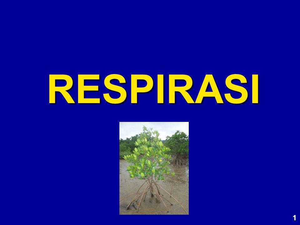 RESPIRASI 1