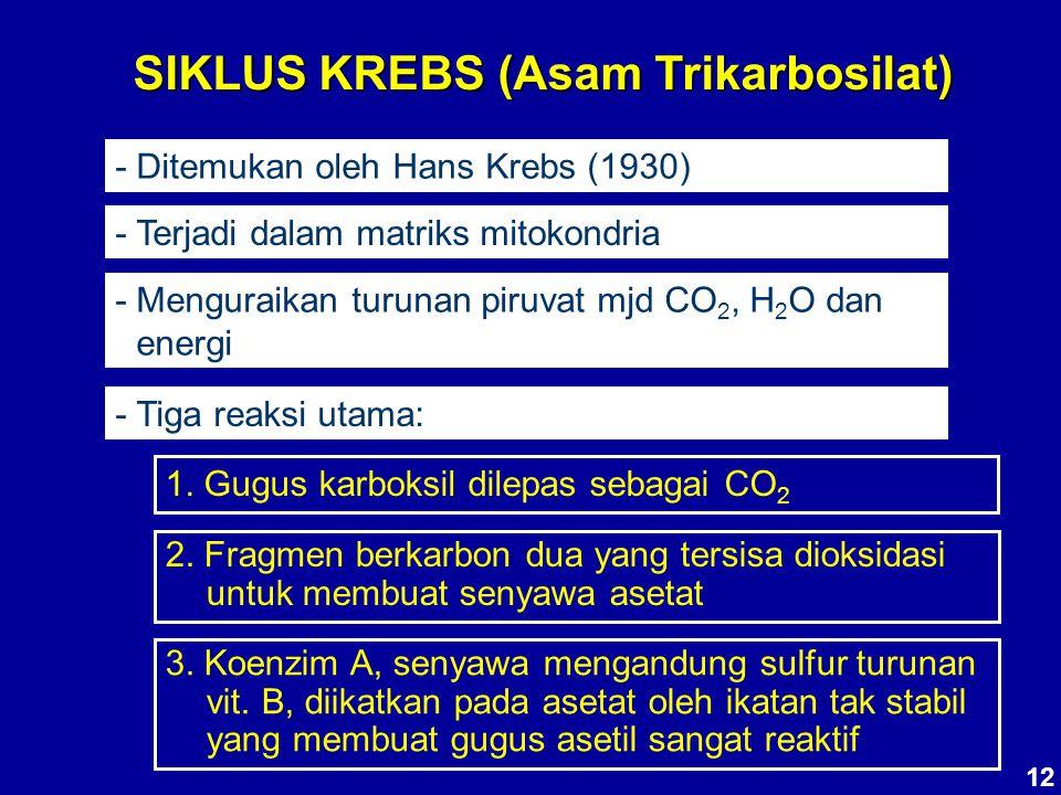 SIKLUS KREBS (Asam Trikarbosilat)