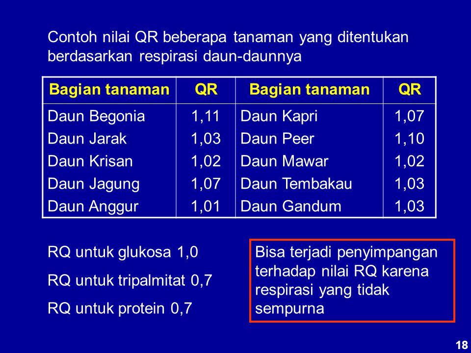 Contoh nilai QR beberapa tanaman yang ditentukan berdasarkan respirasi daun-daunnya