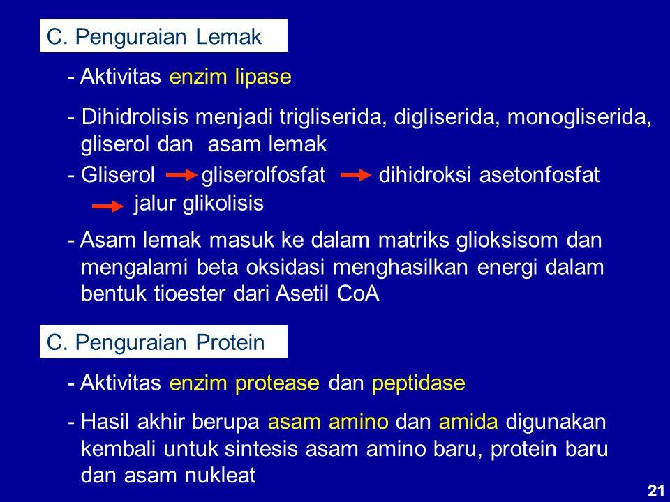 - Aktivitas enzim lipase