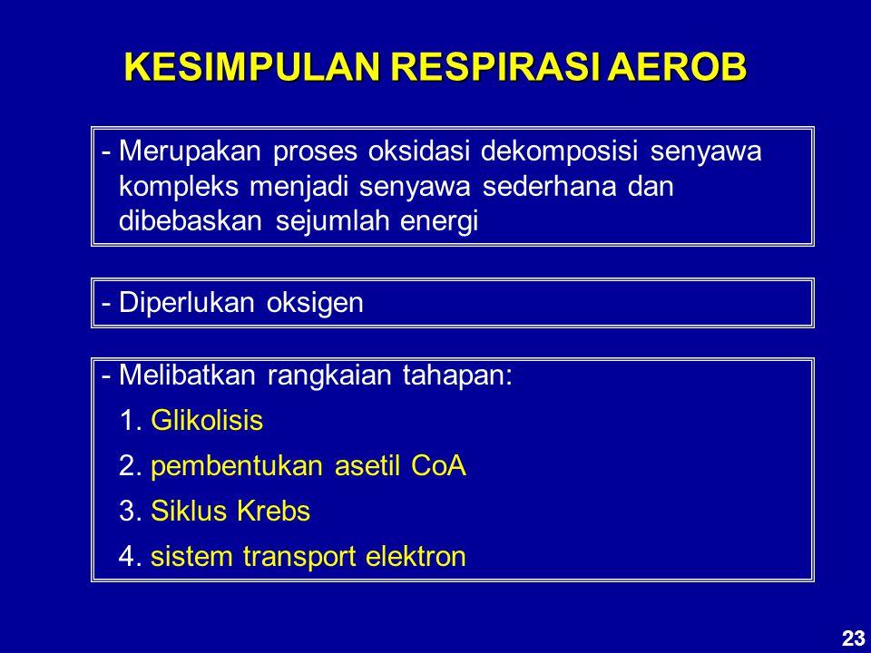 KESIMPULAN RESPIRASI AEROB