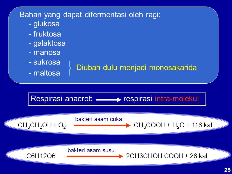 CH3CH2OH + O2 CH3COOH + H2O + 116 kal