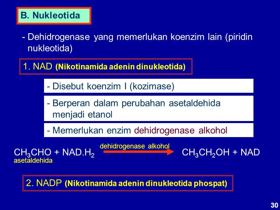- Dehidrogenase yang memerlukan koenzim lain (piridin nukleotida)