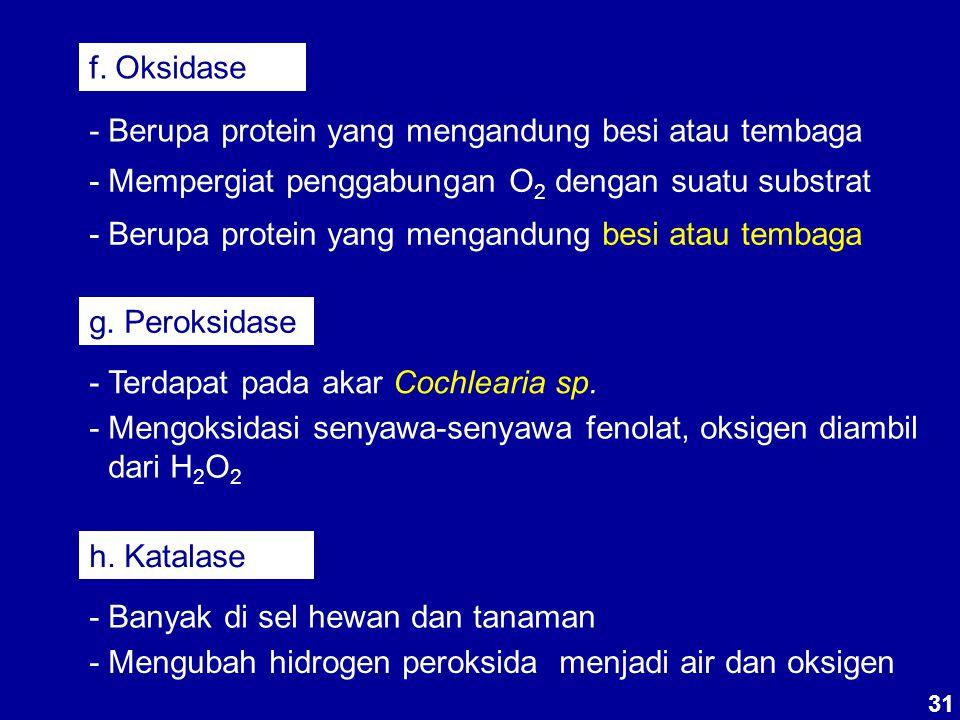 - Berupa protein yang mengandung besi atau tembaga