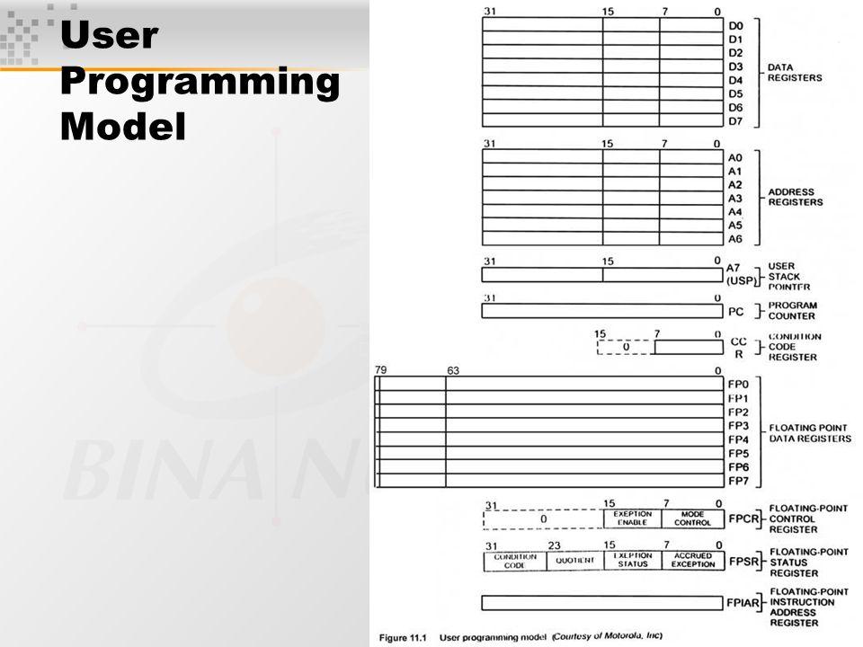User Programming Model