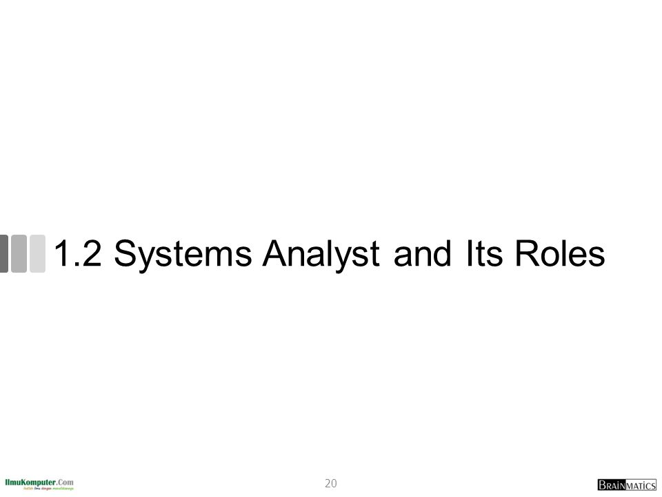 1.2 Systems Analyst and Its Roles
