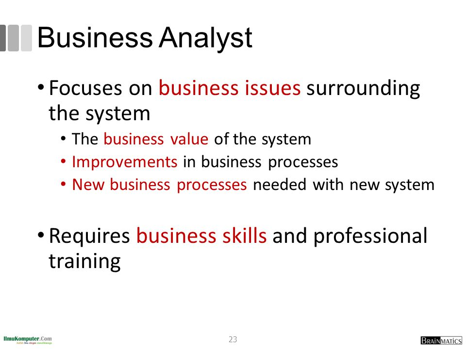 Business Analyst Focuses on business issues surrounding the system