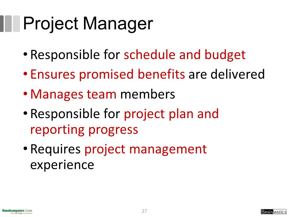 Project Manager Responsible for schedule and budget