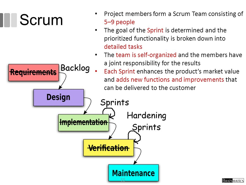 Scrum Project members form a Scrum Team consisting of 5–9 people