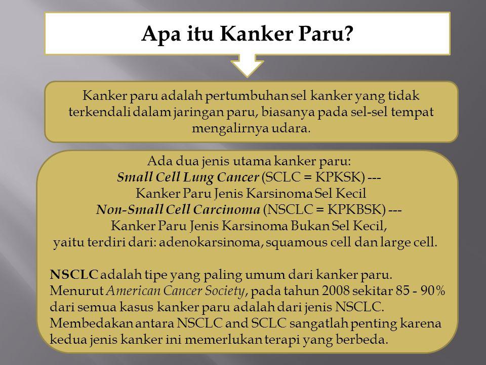 Apa itu Kanker Paru