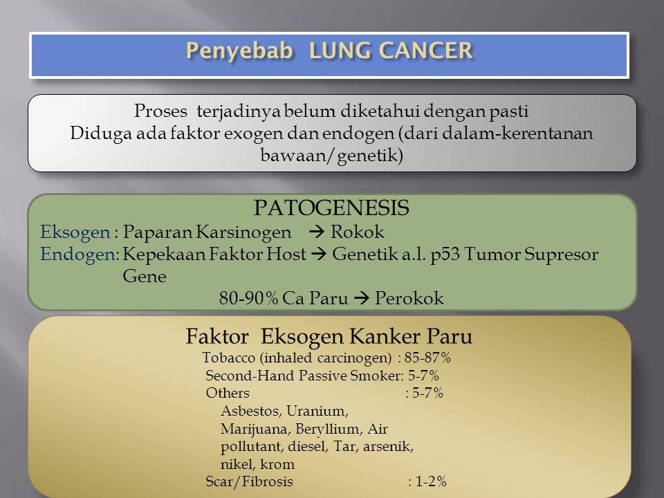 Faktor Eksogen Kanker Paru