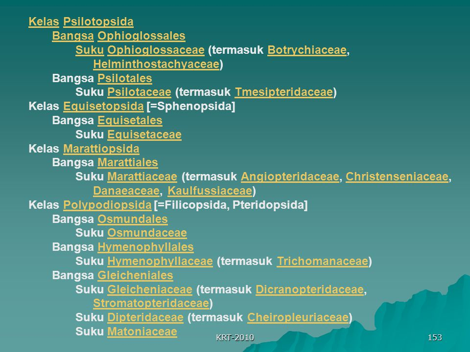Bangsa Ophioglossales
