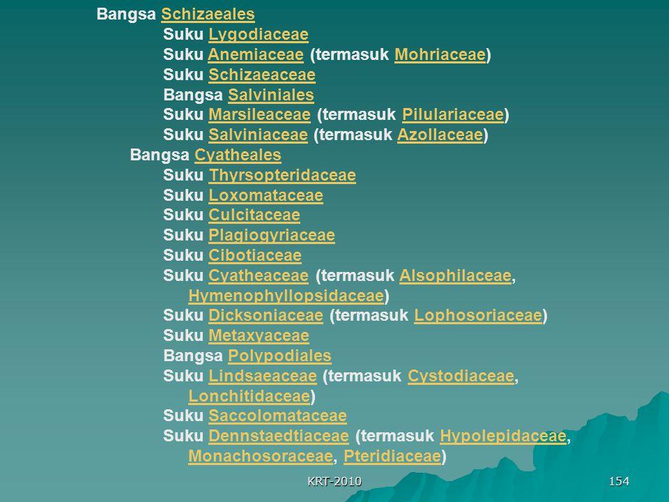 Suku Anemiaceae (termasuk Mohriaceae) Suku Schizaeaceae