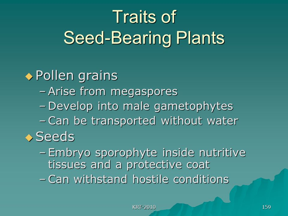 Traits of Seed-Bearing Plants