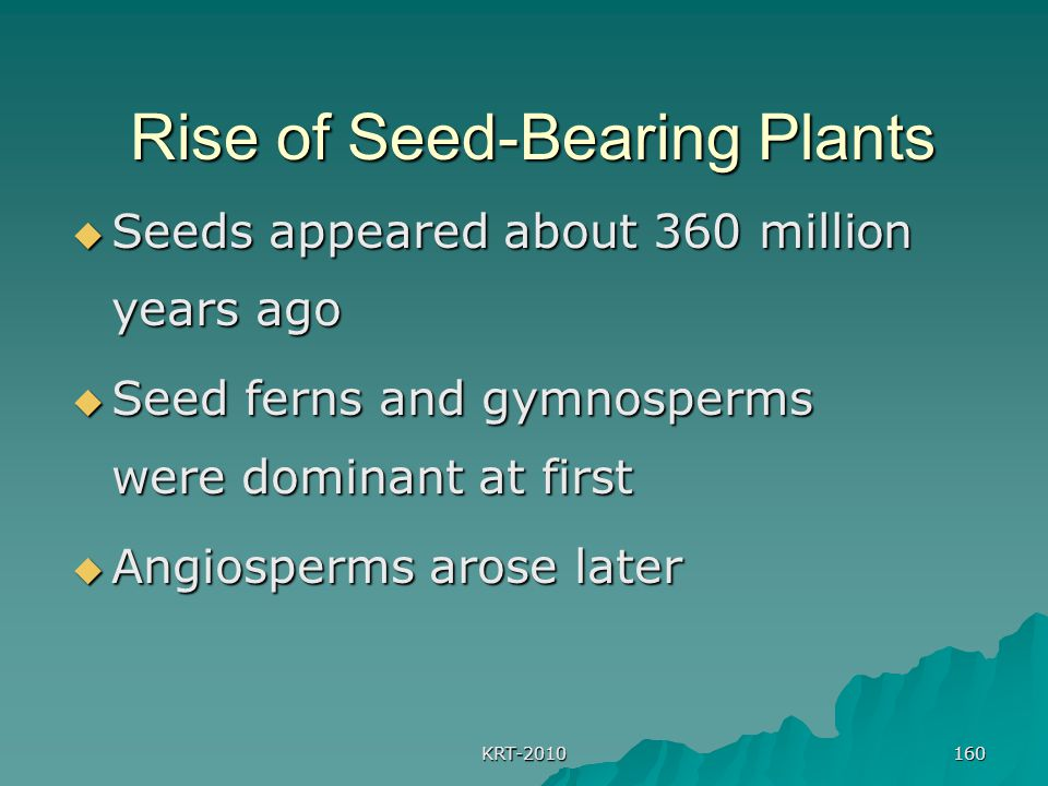 Rise of Seed-Bearing Plants