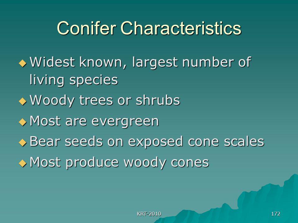 Conifer Characteristics