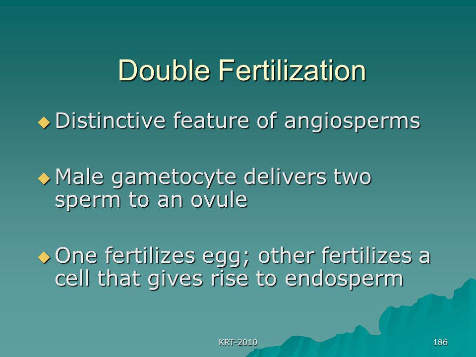 Double Fertilization Distinctive feature of angiosperms