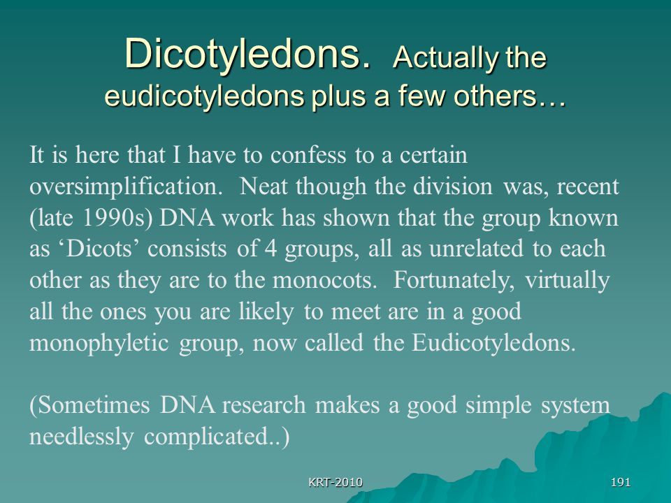 Dicotyledons. Actually the eudicotyledons plus a few others…