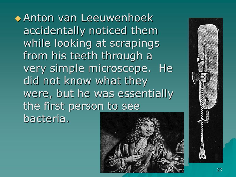 Anton van Leeuwenhoek accidentally noticed them while looking at scrapings from his teeth through a very simple microscope. He did not know what they were, but he was essentially the first person to see bacteria.