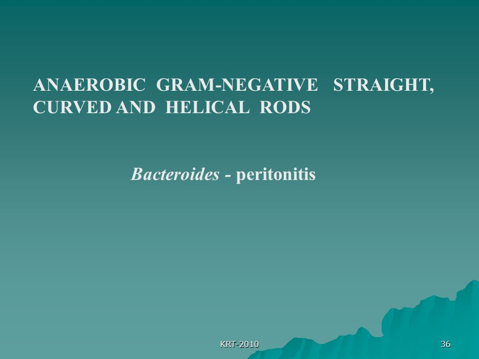 ANAEROBIC GRAM-NEGATIVE STRAIGHT, CURVED AND HELICAL RODS
