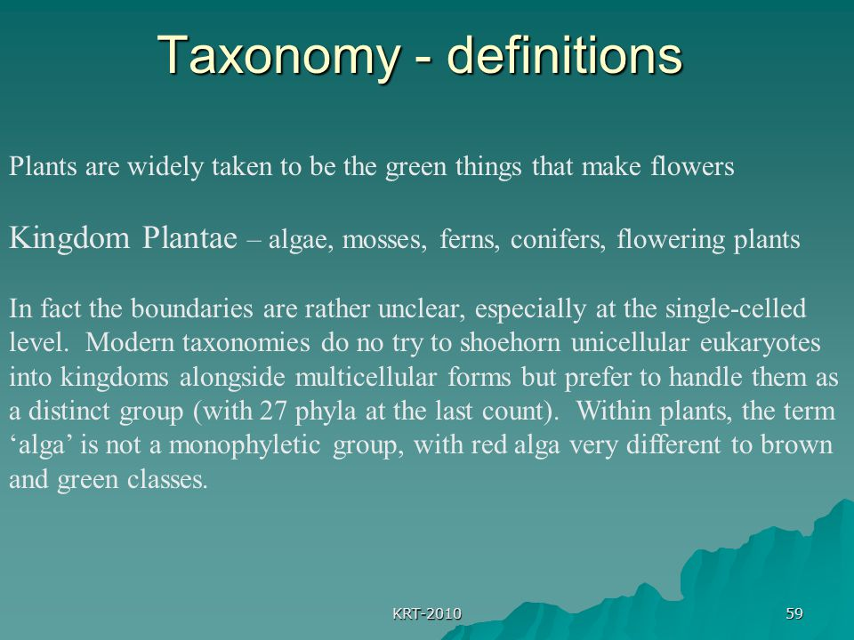 Taxonomy - definitions