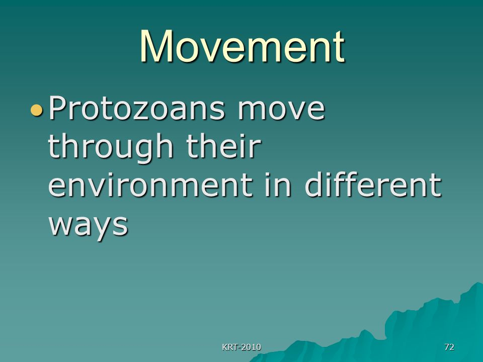 Movement Protozoans move through their environment in different ways