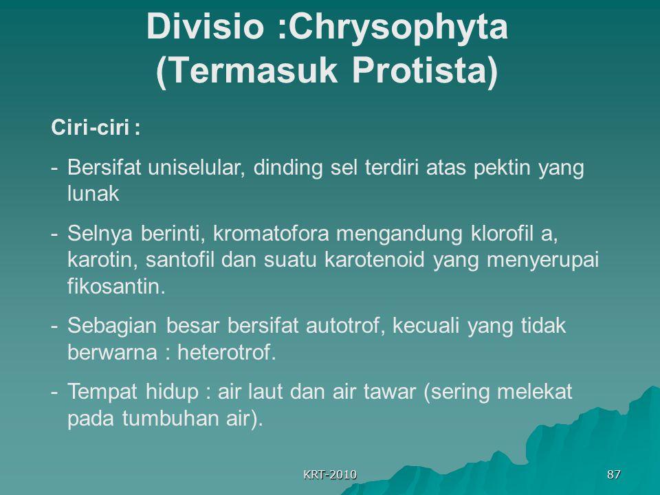 Divisio :Chrysophyta (Termasuk Protista)