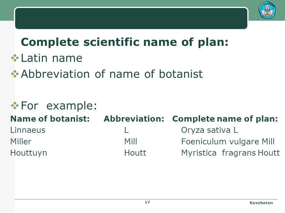 Complete scientific name of plan: Latin name