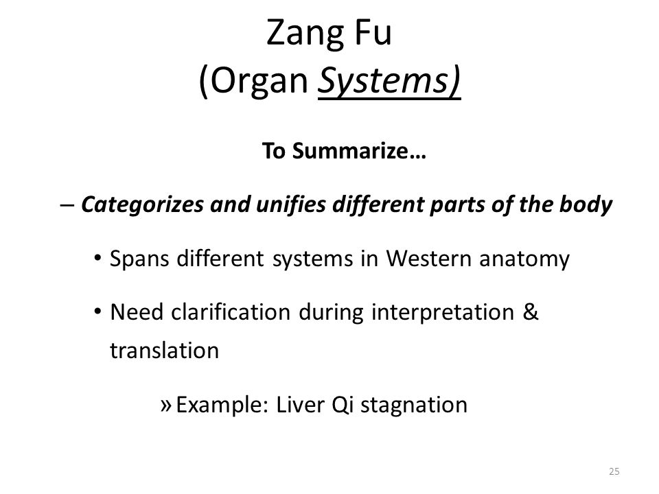 Zang Fu (Organ Systems)