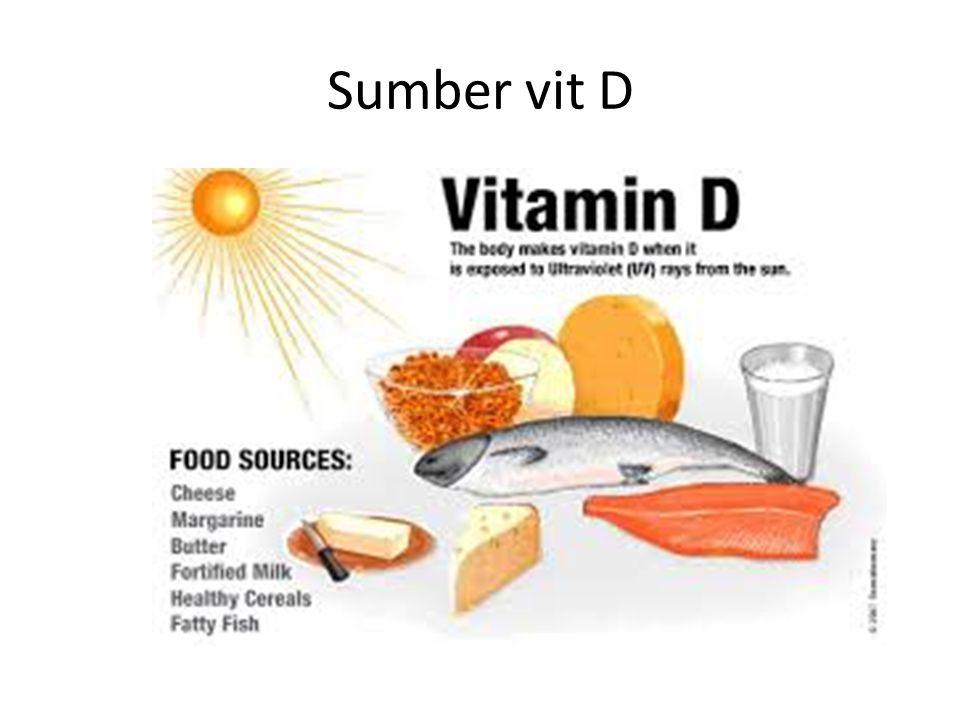 Sumber vit D