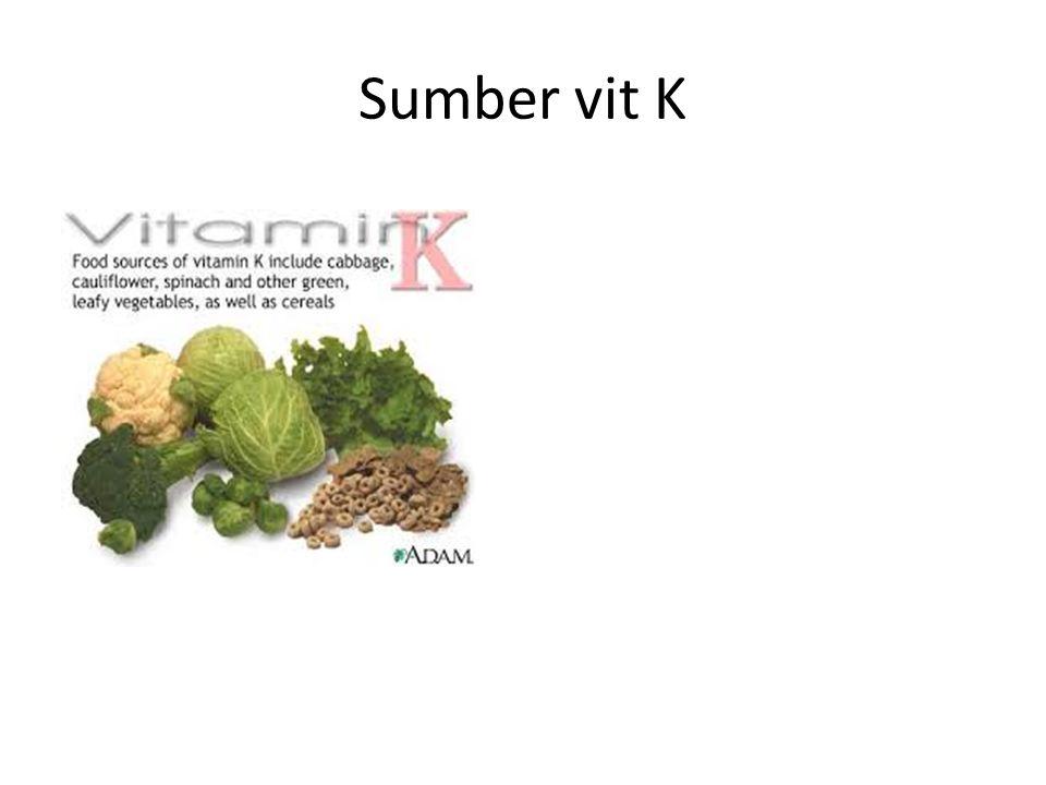 Sumber vit K