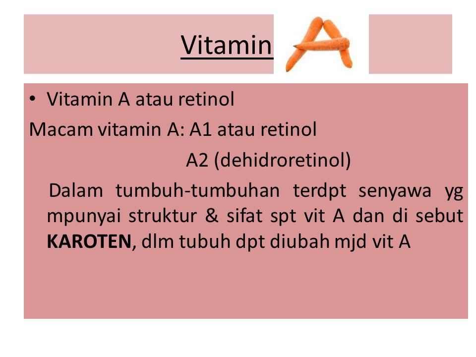 Vitamin A Vitamin A atau retinol Macam vitamin A: A1 atau retinol
