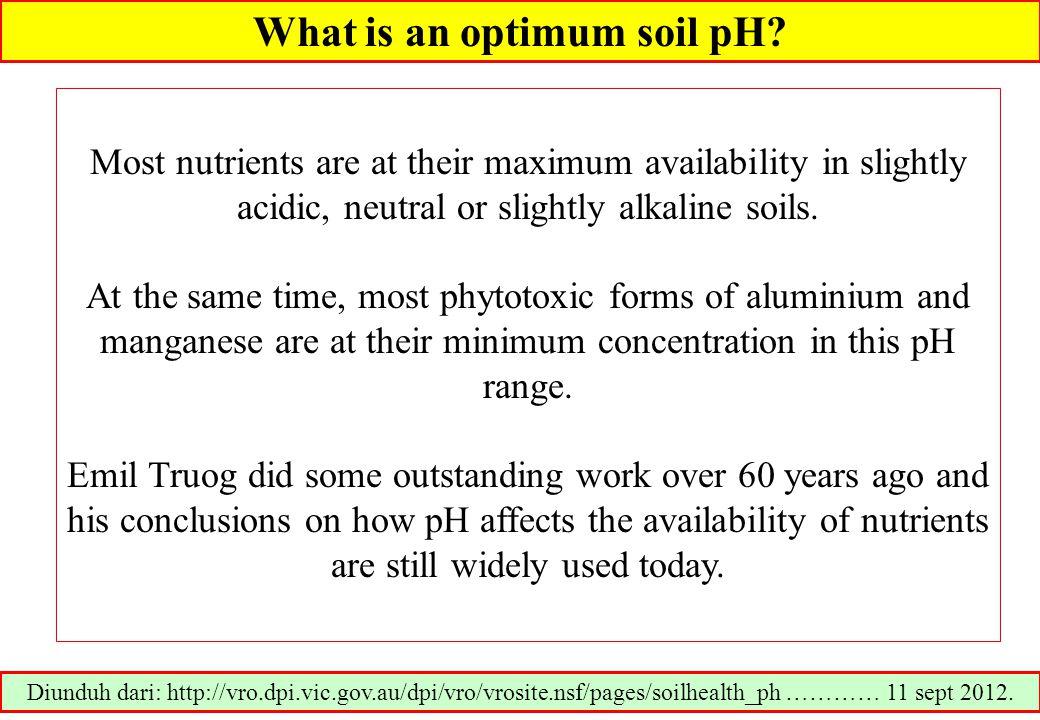 What is an optimum soil pH