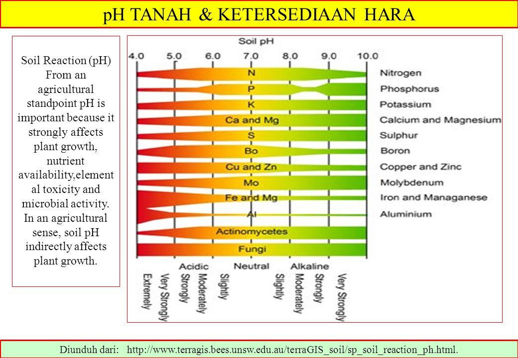 pH TANAH & KETERSEDIAAN HARA