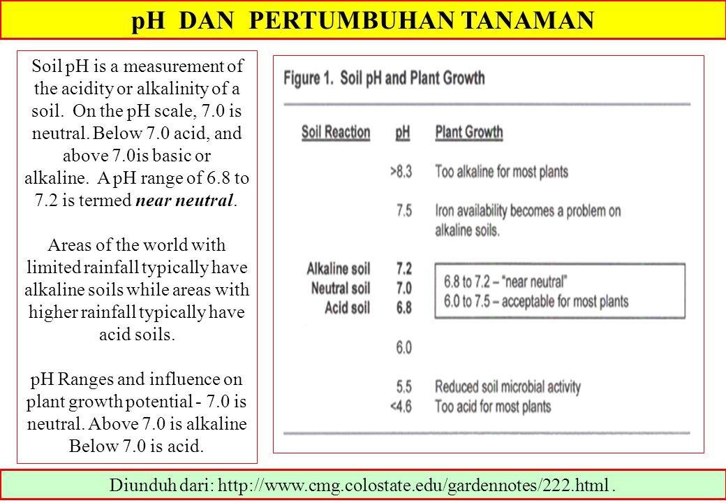 pH DAN PERTUMBUHAN TANAMAN