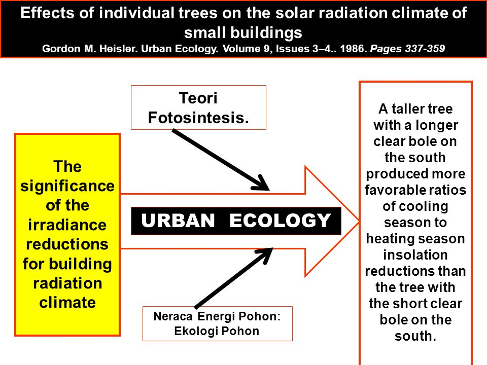 Effects of individual trees on the solar radiation climate of small buildings