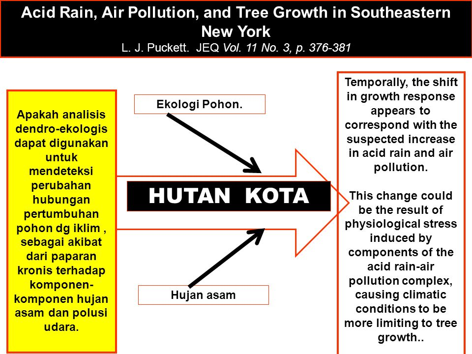 Acid Rain, Air Pollution, and Tree Growth in Southeastern New York