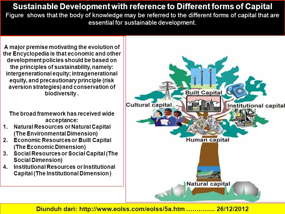 Sustainable Development with reference to Different forms of Capital