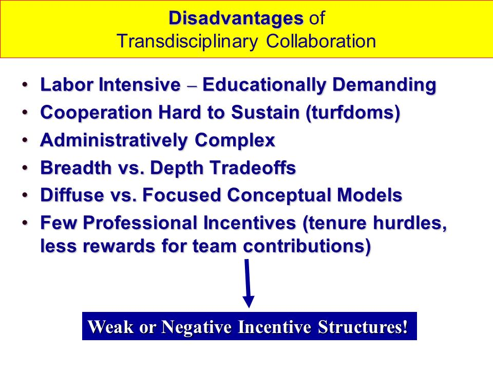 Disadvantages of Transdisciplinary Collaboration