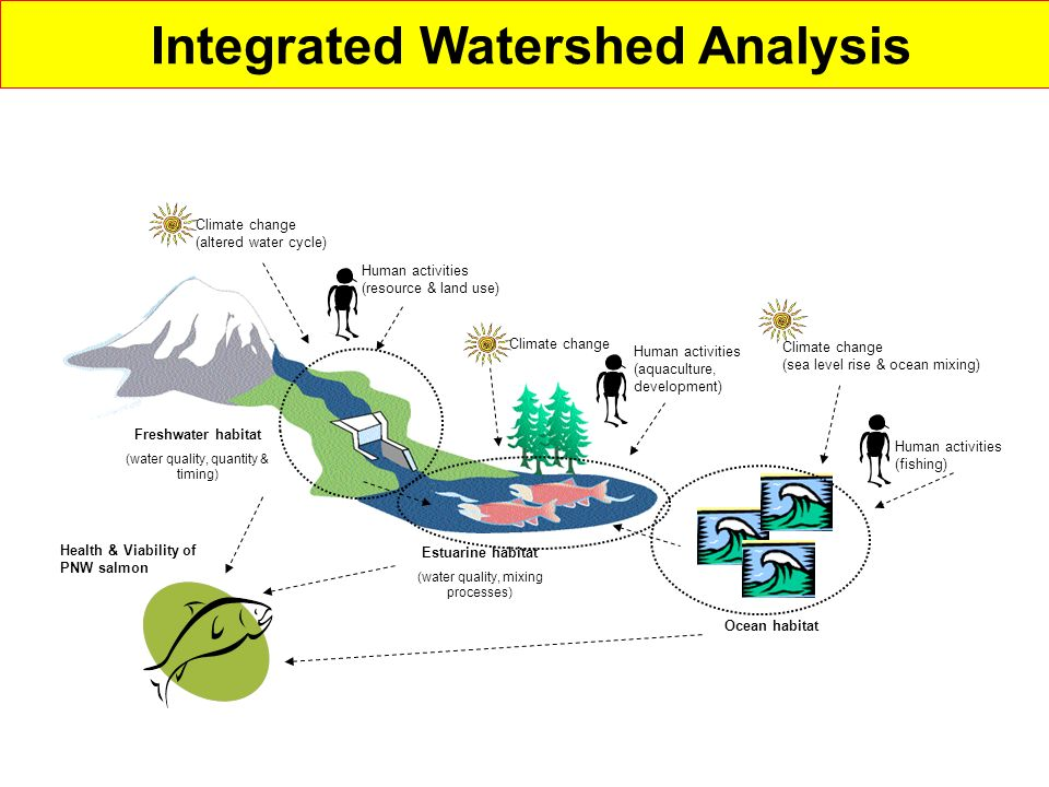 Integrated Watershed Analysis