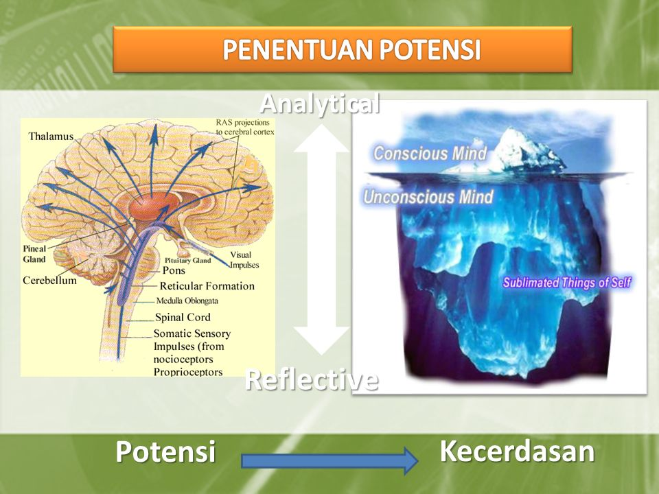 PENENTUAN POTENSI Analytical Reflective Potensi Kecerdasan