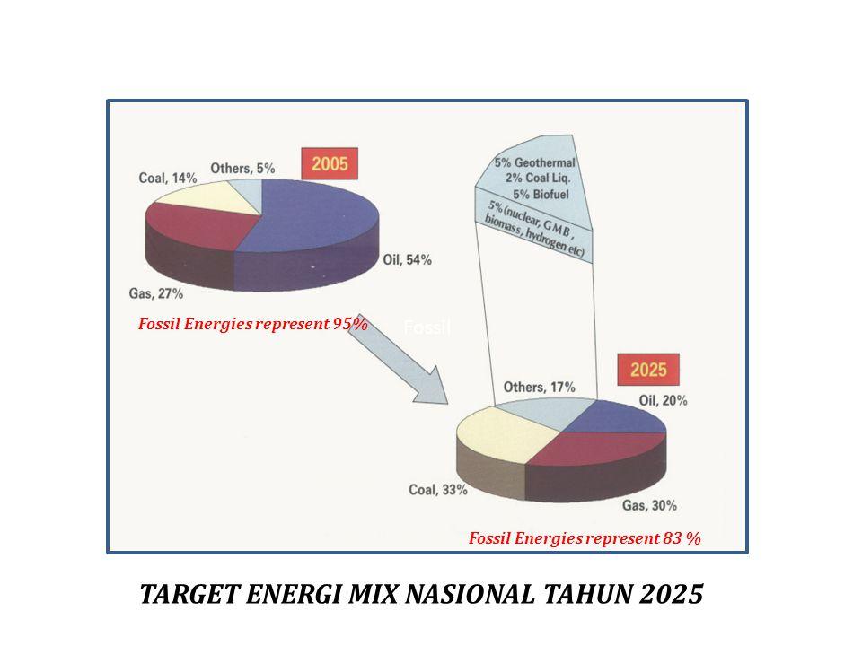 TARGET ENERGI MIX NASIONAL TAHUN 2025