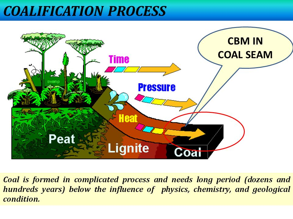 COALIFICATION PROCESS