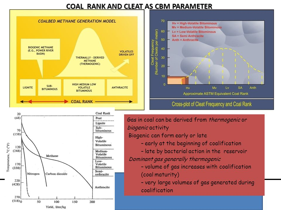 COAL RANK AND CLEAT AS CBM PARAMETER