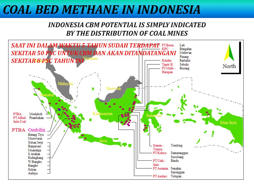 COAL BED METHANE IN INDONESIA